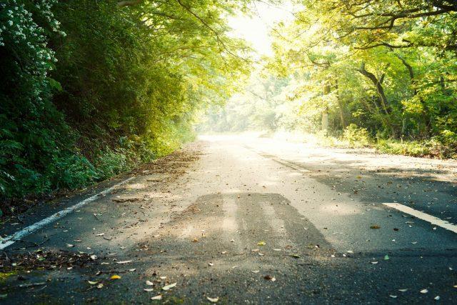 死亡事故が起きた道路